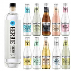 Alkoholfri Gin Tonic Mix Bartender