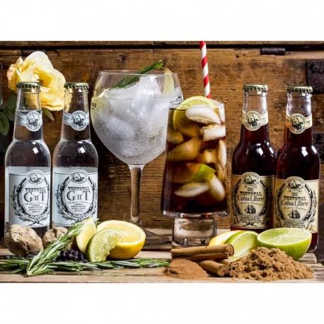 Alkoholfri Drinks - Teetotal 10 x 20 cl